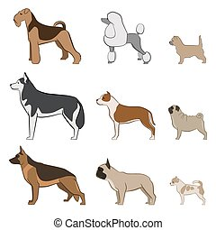 Breeds of dogs set.