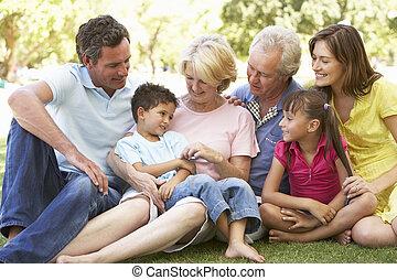 breidde uit, groep, gezin, park, verticaal, het genieten van, dag