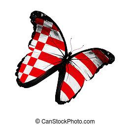 Bremen flag butterfly