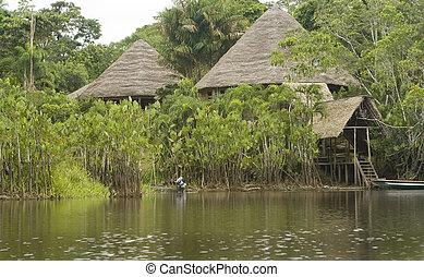 brengen onder, in, de, ecuadoriaans, amazone