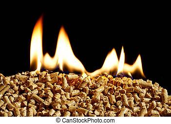 brennender, holzchip, pillen, a, erneuerbar, quelle, von, energie, werden, populär, als, a, grün, umweltsmäßig freundlich, kraftstoff, für, herde, welcher, besorgen, haushalt, heizung
