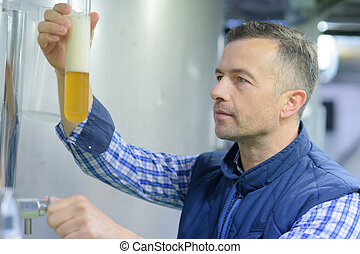 brewer examining the beer for its purity