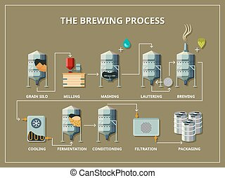 Brewery process infographic in flat style - Brewery process...