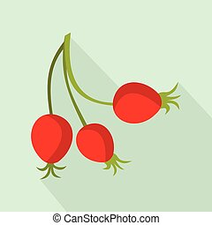 Briar fruits icon, flat style