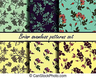 Briar seamless patterns set - Briar seamless vector patterns...