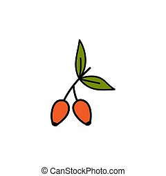 Briar vector illustration. Hand drawn cute red briar fruit ...