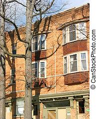 Brick building - Brick apartment building and oak trees