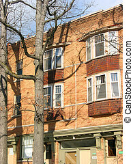 Brick building - Brick apartment building and oak trees