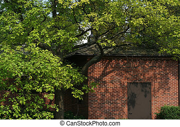 Brick building with a large green tree covering it with...
