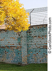 Brick factory wall. Nearby is a tree with yellowed leaves.