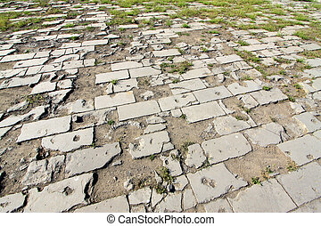 brick paved ground