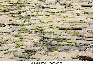 brick paved ground