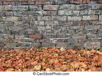 Brick Wall And Autumn Leaves