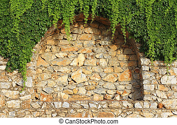Brick wall and climbing plant