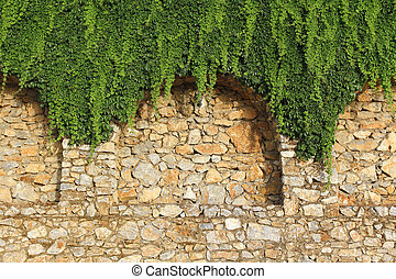 Brick wall and growing plant