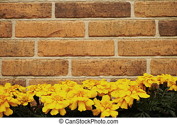 Brick wall decorated with Yellow Flower decoration