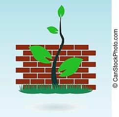brick wall. grass concept.