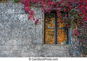 brick wall with a window and a plant