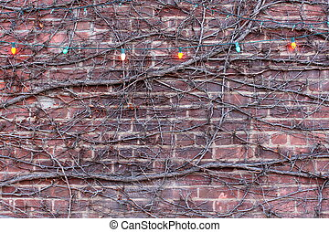 Brick wall with vines and lights