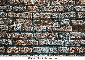 Bricks wall with lichens. Background texture