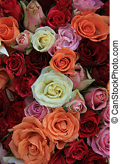 Bridal roses in various colors
