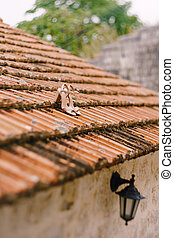 Bridal sandals on the old roof of the building with a black street hanging lamp.