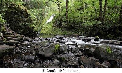 Bridal Veil Falls Creek along Colum