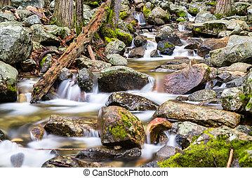 Bridalveil Creek in Yosemite Valley, California