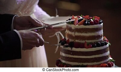 Bride and groom cutting wedding cake indoors