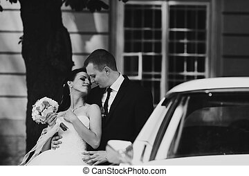 Bride and groom stand leaned on the car