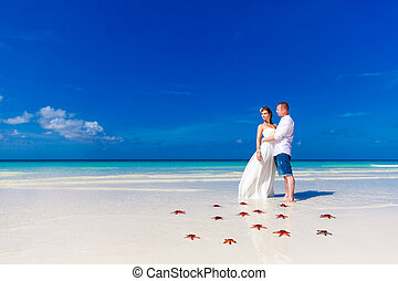 Bride and Groom standing on tropical beach shore with red starfish in the sand