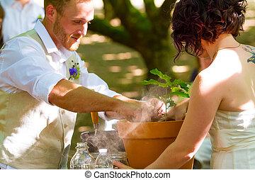 Bride and Groom Tree Planting