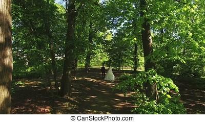 Bride and groom walking in a park aerial