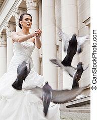 bride doves