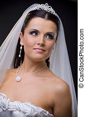 Bride in veil - Closeup portrait of a young bride wearing ...