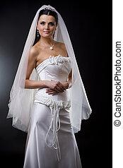 Bride in wedding dress - Studio portrait of a young bride...