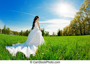 Bride on a field in the sunshine