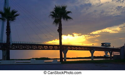 bridge against beautiful sunset sky with palm trees use for natural background ,backdrop and multipurpose sea scene