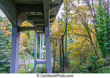Bridge And Fall Colors 2
