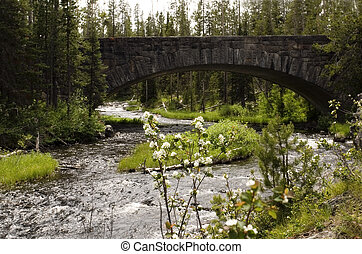 Bridge and flowers - Bucolic scene with bridge and flowers ...