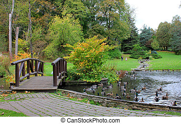 Bridge and lake at autumn park