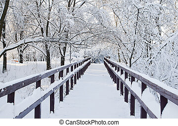 bridge and trees under the snow in park