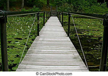 Bridge and Water Lilies