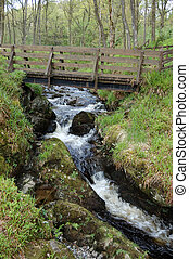 Bridge and waterfall over a small stream in the Queen...