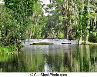 Bridge at Magnolia Plantation in Charleston, SC