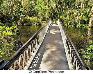 Bridge at Magnolia Plantation in Charleston, SC