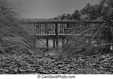 bridge - black & white