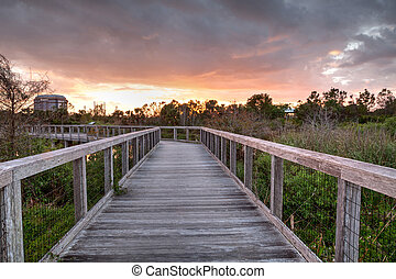 Bridge boardwalk made of wood along a marsh pond