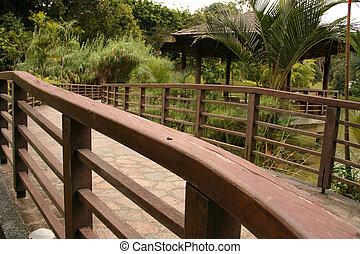 Bridge - Botanical Gardens, Singapore