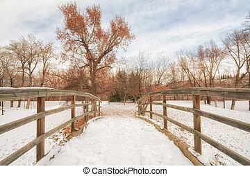 Bridge Covered in Snow